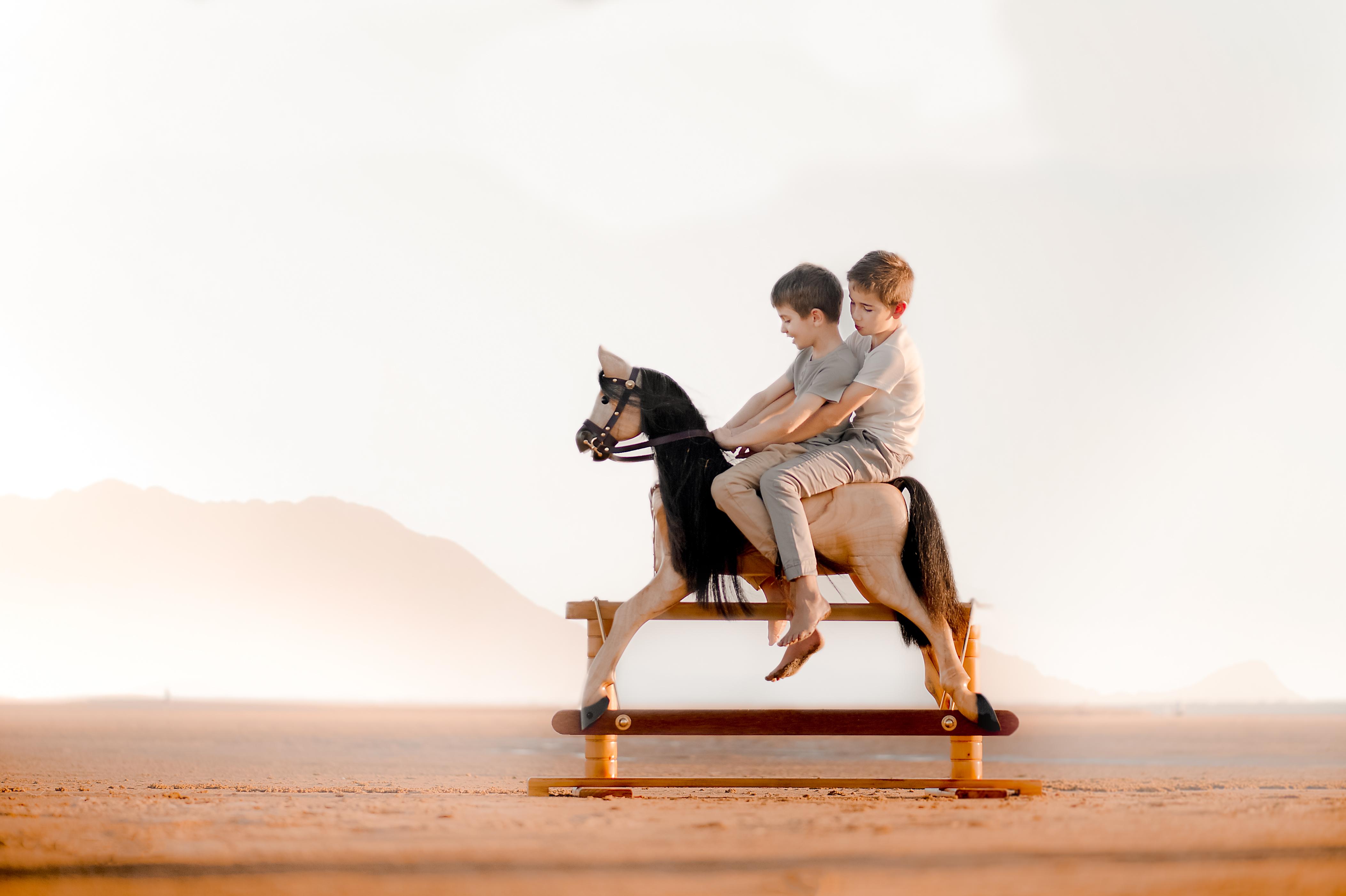 Rocking Horses-18