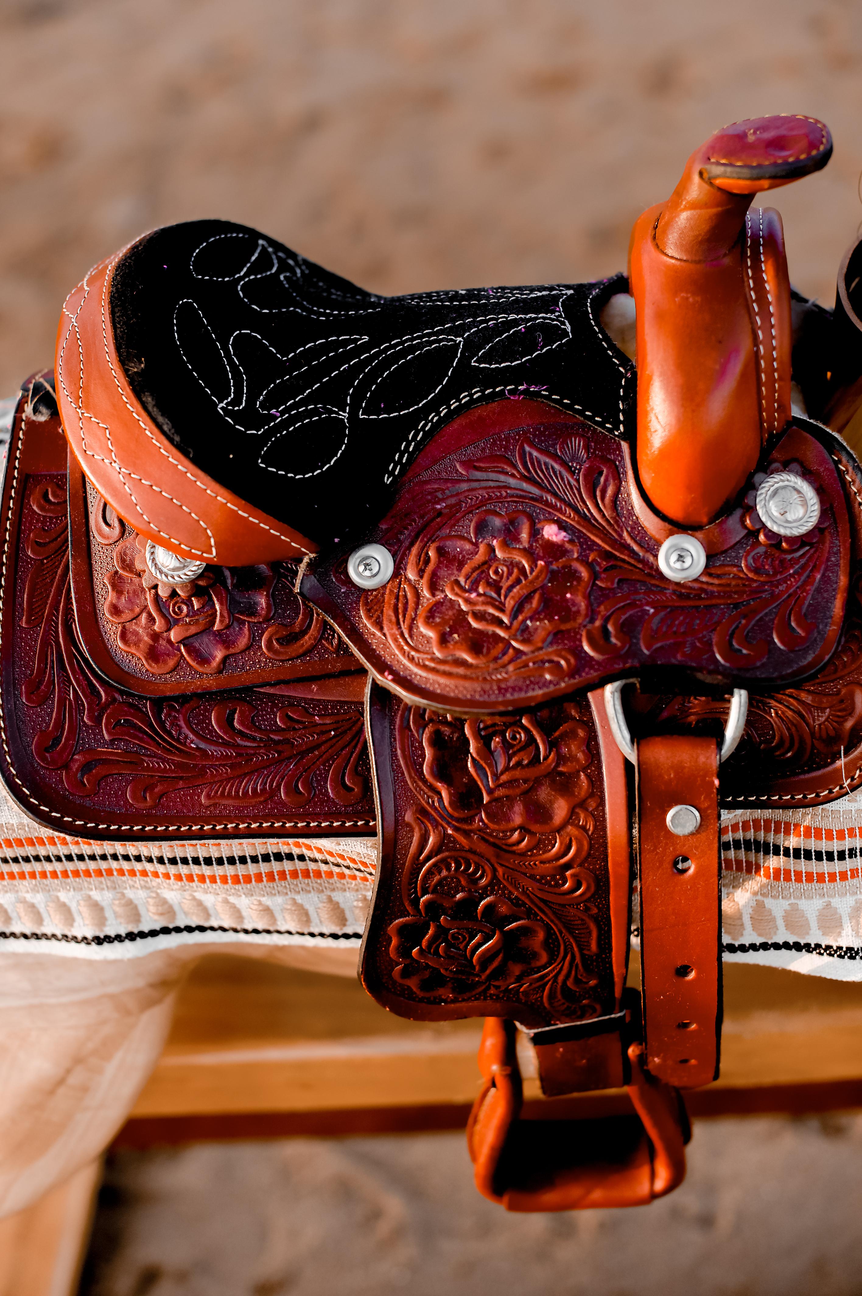 Rocking Horses-37