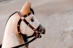 Rocking Horses-39
