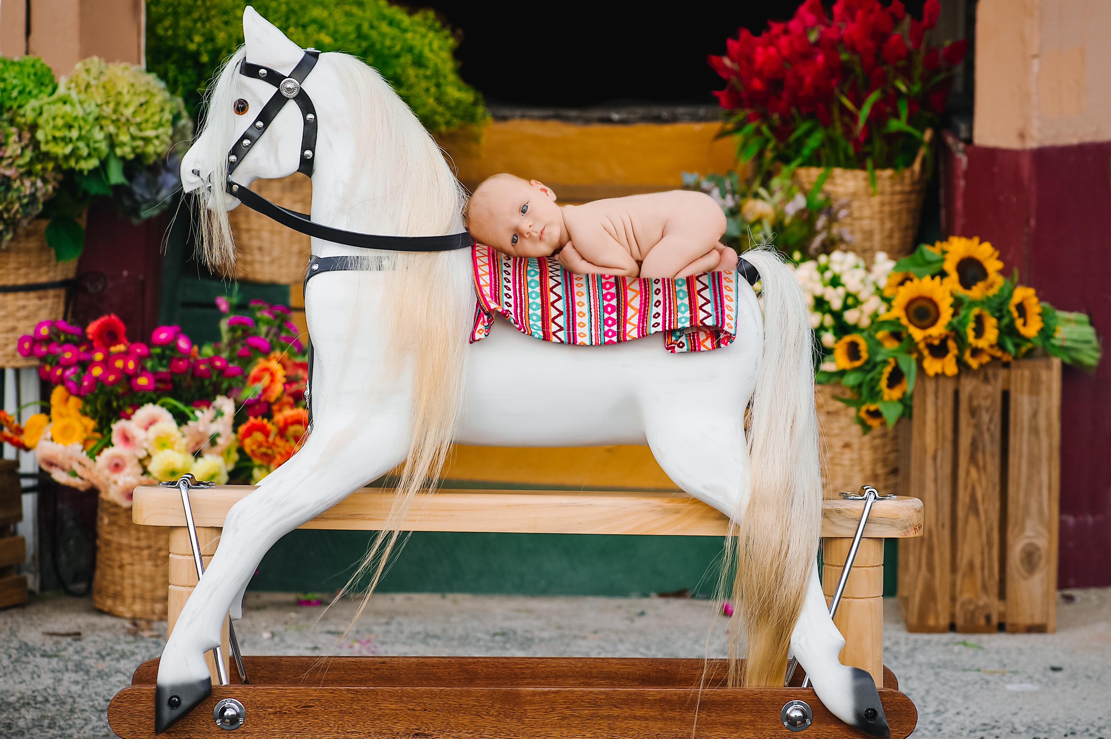 Rocking Horses-27