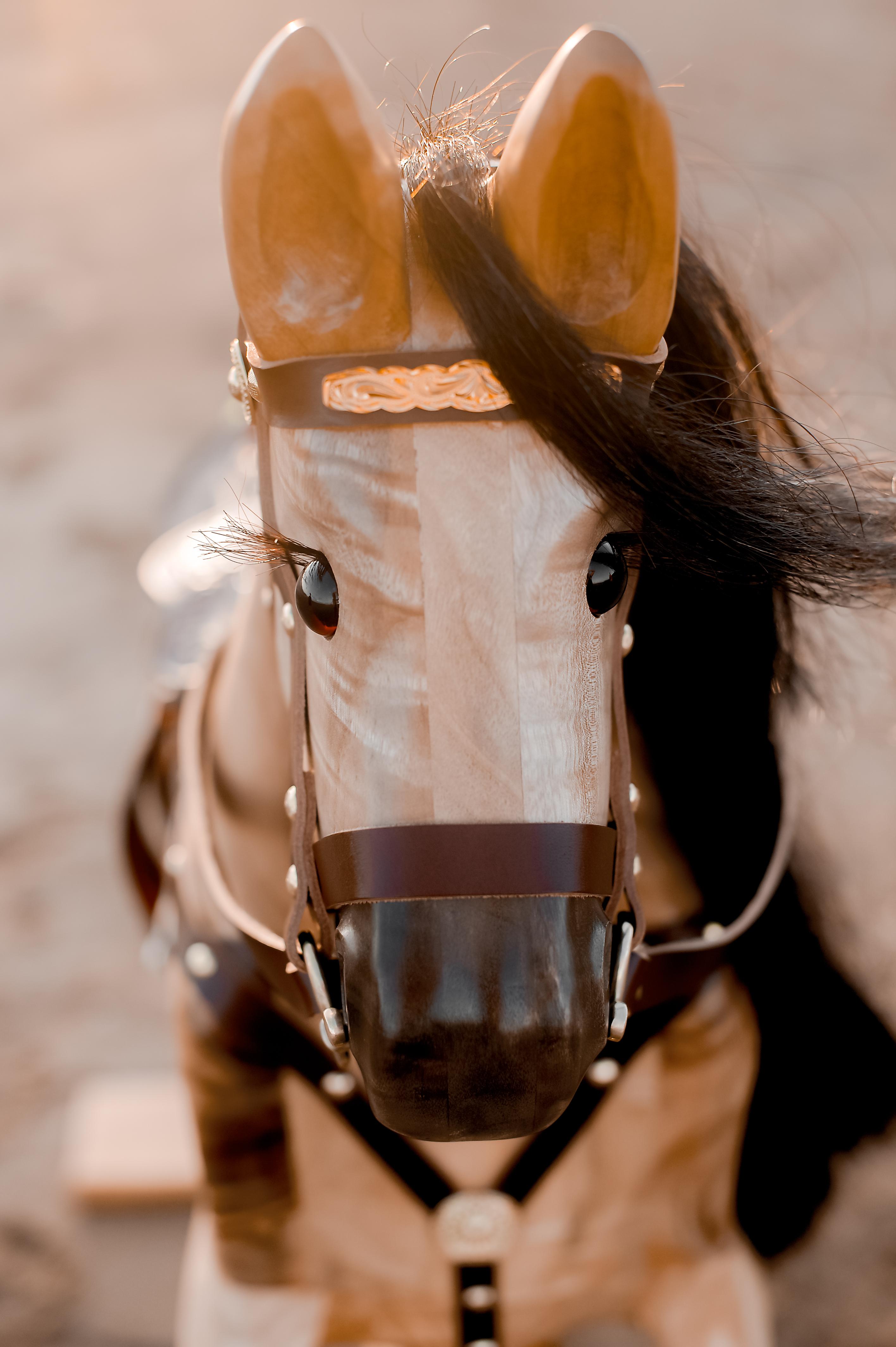 Rocking Horses-32