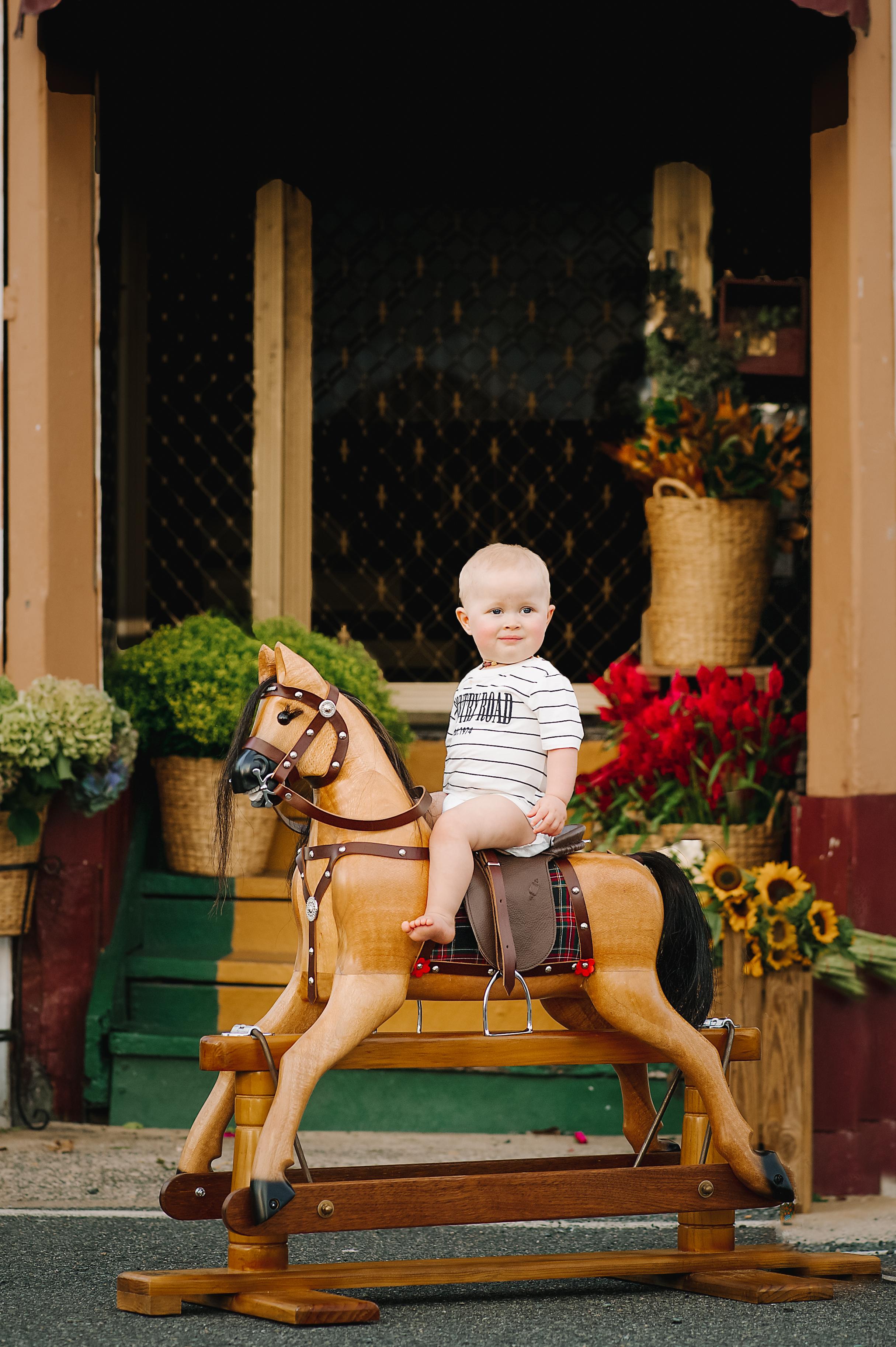 Rocking Horses-24