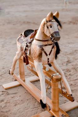 Rocking Horses-34