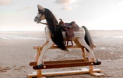 Custom Build Horse
