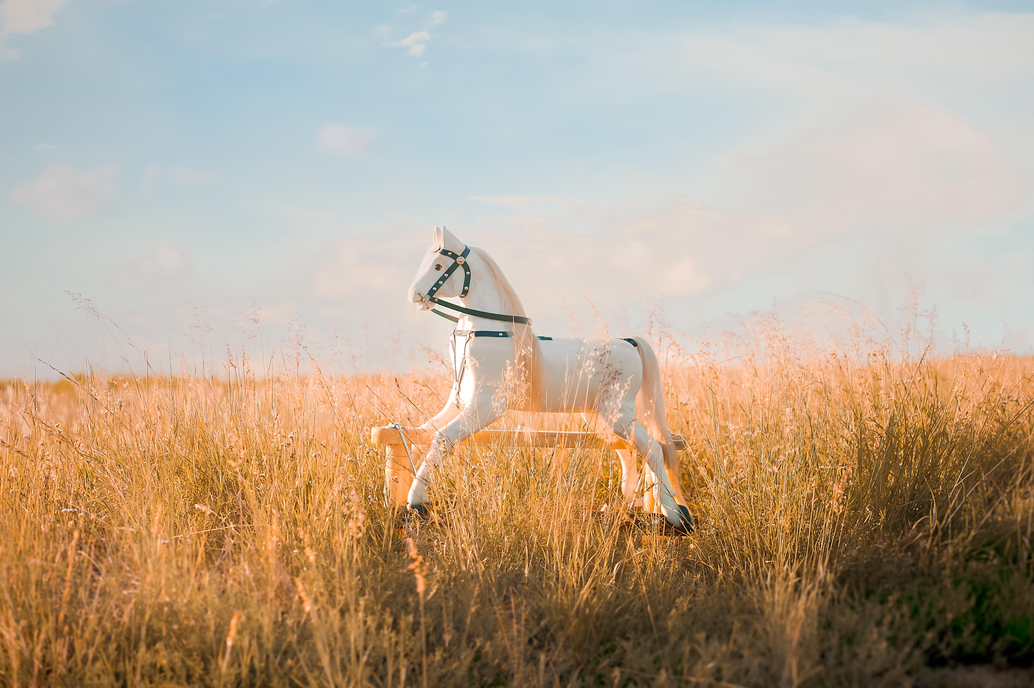 Rocking Horses-4