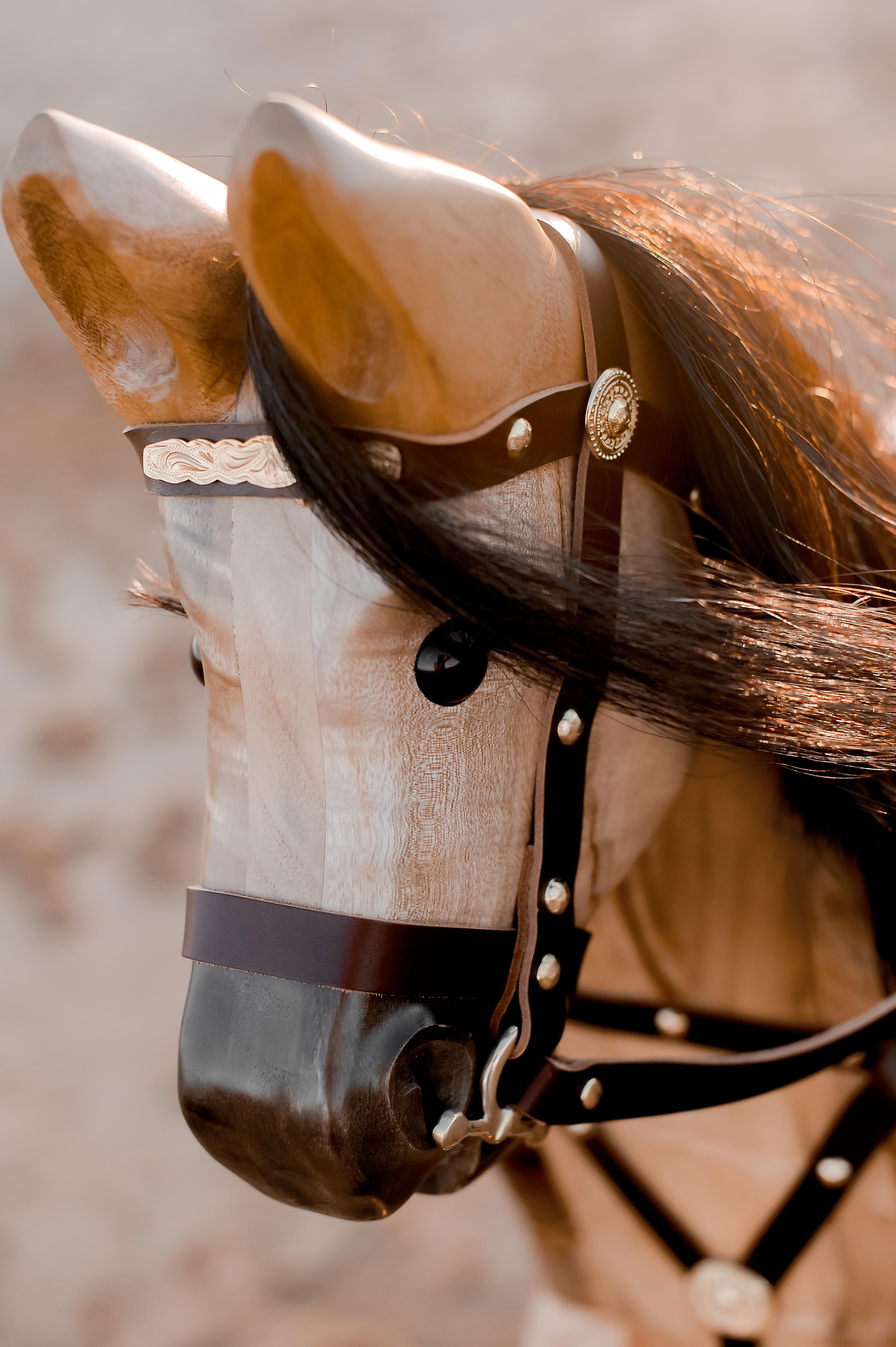 Rocking Horses-30