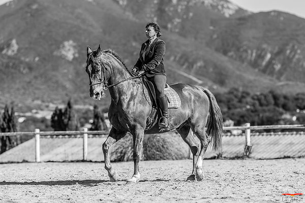 Equitation Corse