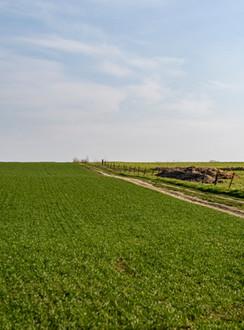 Balade nature Wallonie
