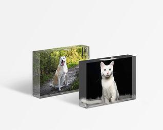Acrylic block - set of 2.jpg