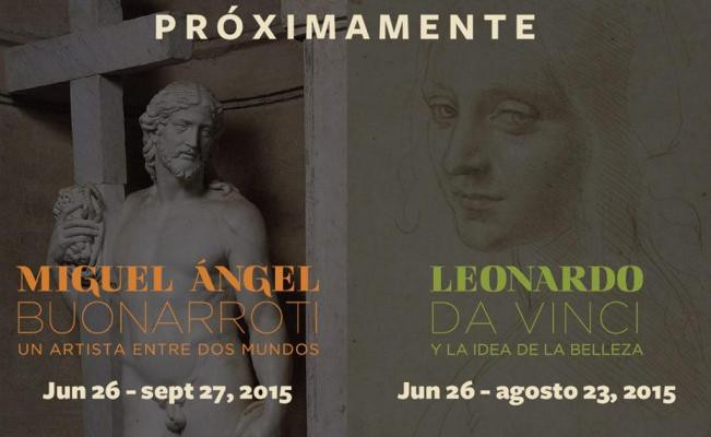 bellas_artes_leonardo_miguel_angel_st.jpg
