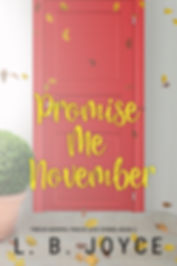 Promise Me November Amazon Cover.jpg