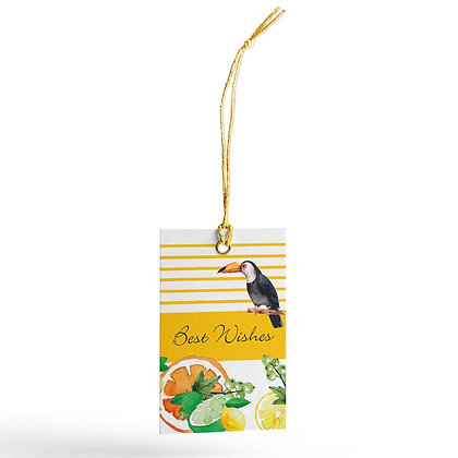 Citrus Summer Gift Tags (Set of 20)