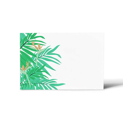Exotic Palm Flat Cards (Set of 40)