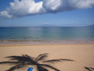 Aloha from Maui!