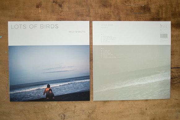 Lots of Birds 限定重量盤180gバイナル+ P16ブックレット + MP3DLコード
