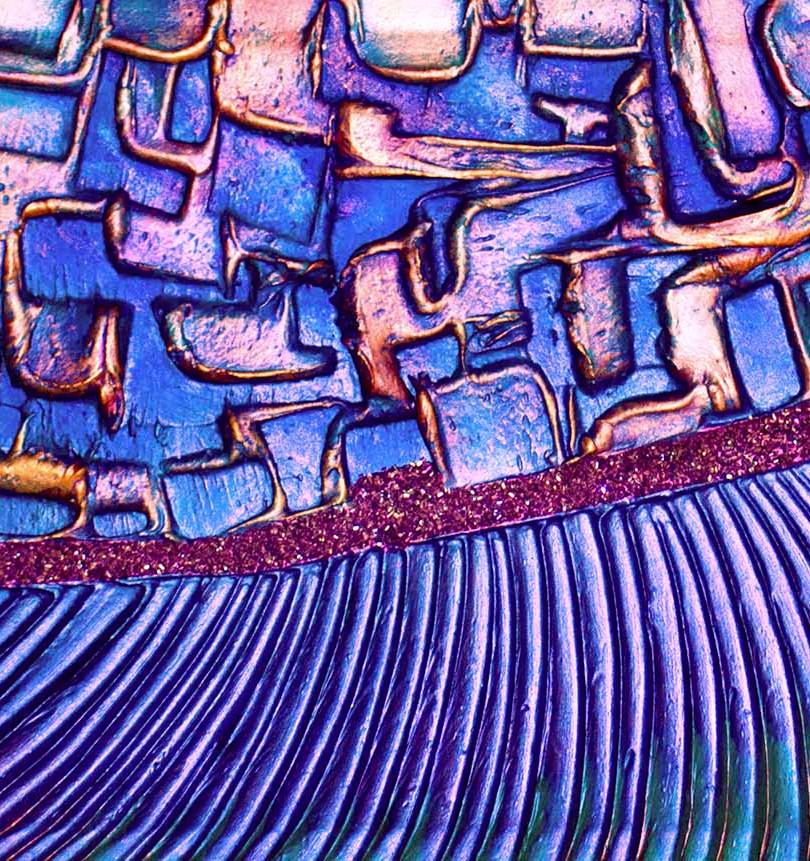 0093 HUMMINGBIRD CREST I FRONT FULL.jpg