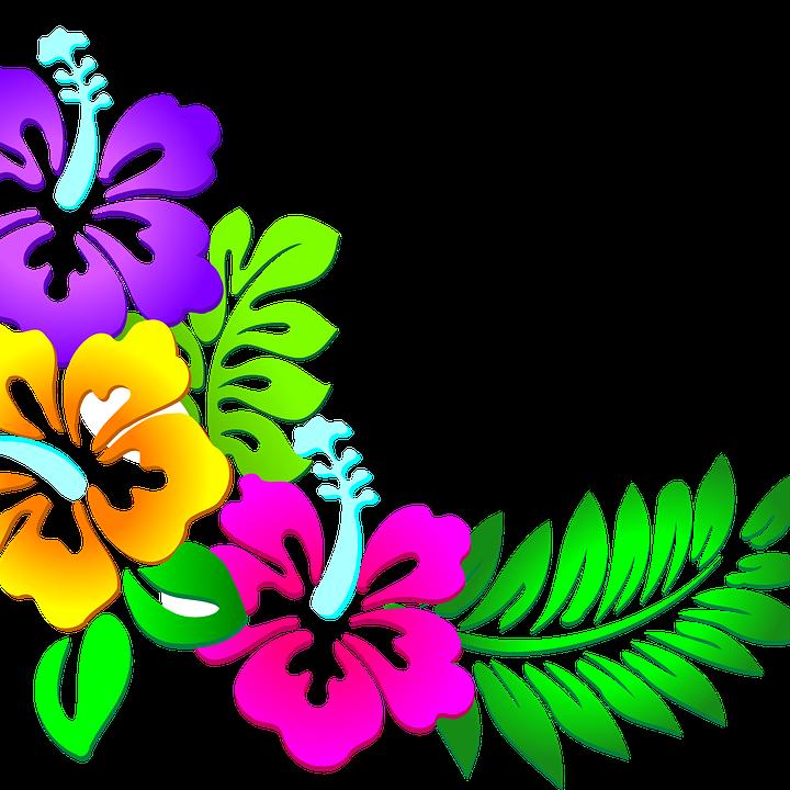 Hawaii Meeting