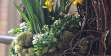 Living Wreath - Think Spring!