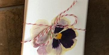 Pressed Flower Gift Enclosures