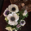 Thumbnail: Spring/Summer Flower Subscription