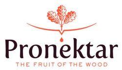 lrg_pronektar_logo__51760.1405375819.600