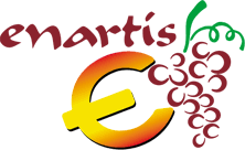 Enartis Euro logo.png