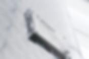 1-ALGOR-IMG-9183-021-logo-nuovo_13391480