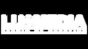 Logo_blanc_8k.png