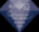 DIAMOND AWARDS 2018 Modern Luxury Weddings Magazine, award, weddingplanning, wedding planner, entertainment, interactive, creative, performer, entertainer, event planner, event planning, winner, atlanta,