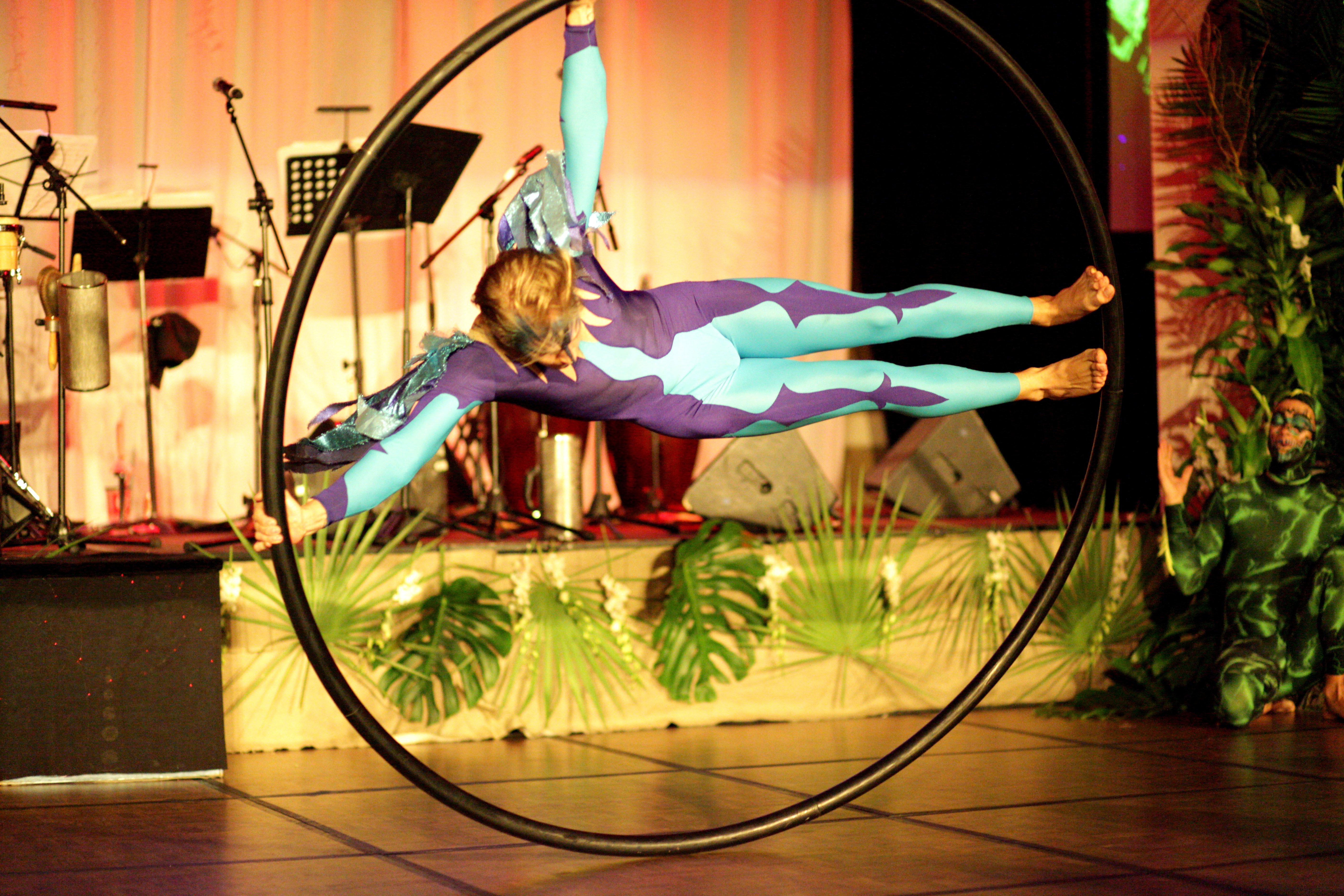 Bluebird Cyr Wheel