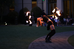 Dragon Staff - Fire Arts