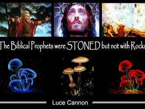 The Biblical Prophets were Stoned But not By Rocks.
