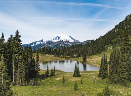 Summer at Mt. Rainier | Landscape Photography