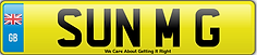 Sun Motors Southend Number Plate