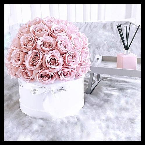 Helen's Bay Pink Rose Hatbox