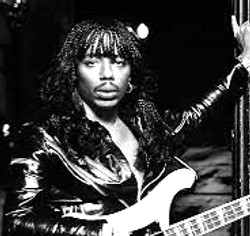 The Prince of Funk - Rick James