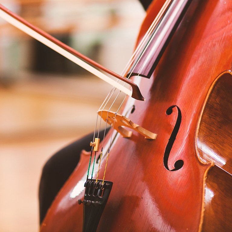String Quartet with Canapés