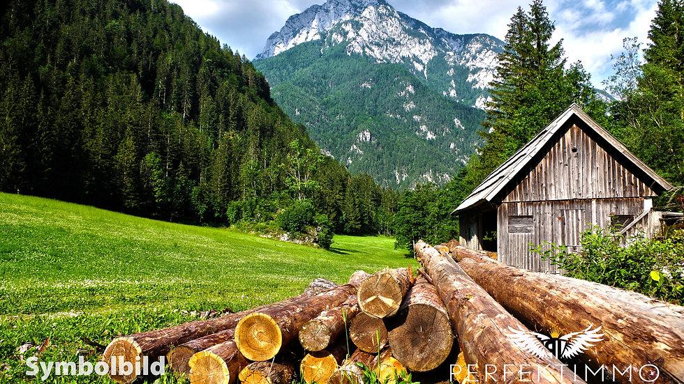 Wald und Wiesengrundstücke