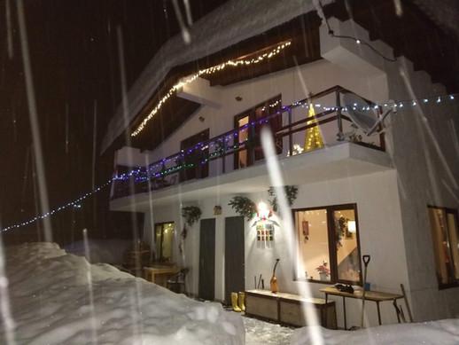 ski house blue bird