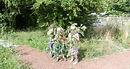 Camouflaged boys 9th Aug 13.jpg