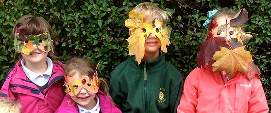 JRM leaf masks crop.jpg