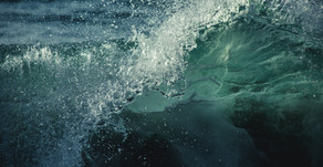 Help Create A Wave of Change