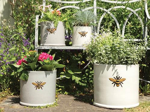 Bee Pots :)