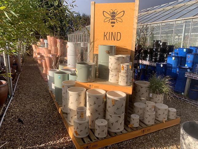 Bee Pots.jpeg