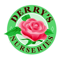 Derrys logo formatted.png