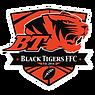 BLACK-TIGERS-LOGO.png