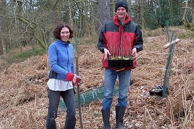 Gentles Copse tree planting