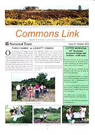 Commons Link