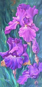 Purple irises_Iryna Kharina.jpg