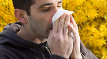 How not to get a cold in the winter: A guide to avoid being ill.
